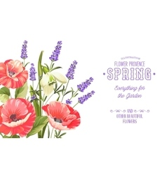 Background with beautiful poppies vector
