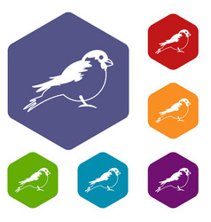 bullfinch icons set vector image vector image
