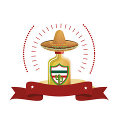 colorful arch bottle of tequila with mexican hat vector image