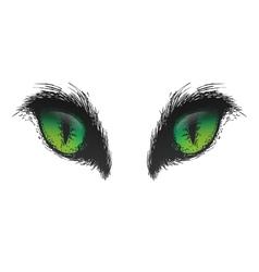 Hand drawn cat eyes eps10 vector