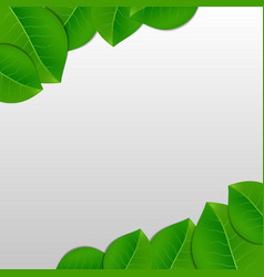 Nature green leaves background vector image