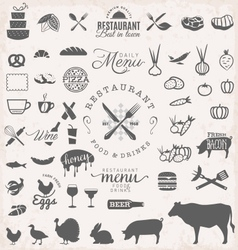 Restaurant Menu and Food Design Elements vector image