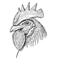 Single comb chicken head vintage vector
