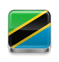 Metal icon of tanzania vector