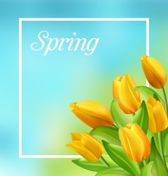 Spring natural frame with yellow tulips flowers vector
