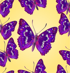 Seamless texture butterfly apatura iris vector