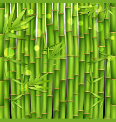 Bamboo oriental seamless pattern vector
