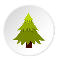spruce icon circle vector image vector image