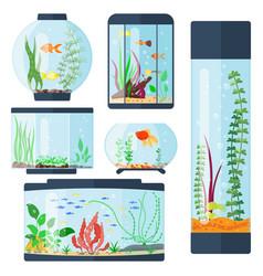 Transparent aquarium isolated vector