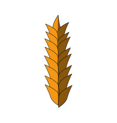 Wheat cereal food vector