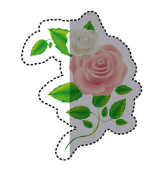 color roses with squere petals and leaves icon vector image vector image