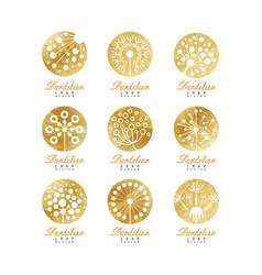Dandelion logo set beautiful nature badge for vector