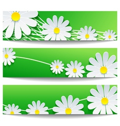 Set of floral banners with chamomile vector image