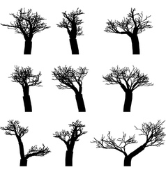 Set of winter trees without leaves silhouettes vector