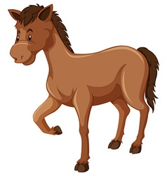 Horse with brown fur vector