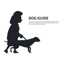 Dog guide silhouette old woman holding pet vector