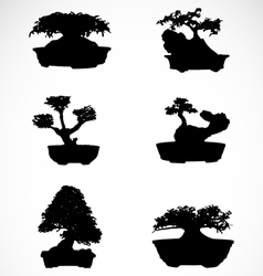 Set of trees in pots vector