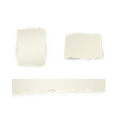 torn paper with ripped edges set vector image