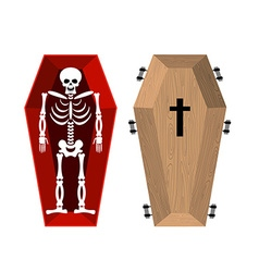 Skeleton in coffin open casket and skull and bones vector