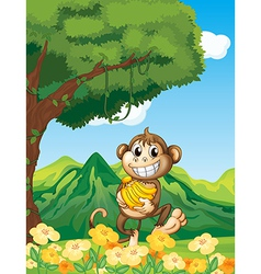 Cartoon monkey banana vector