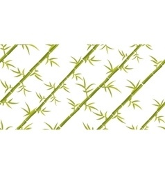 Bamboo seamless diagonal pattern vector image