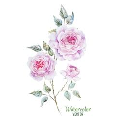 Gentle roses vector