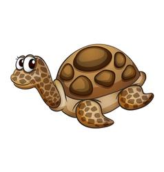 Tortoise vector
