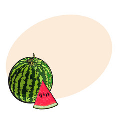 whole watermelon and red triangular piece with vector image