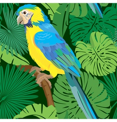 Seamless pattern with Blue Yellow Macaw parrot vector image