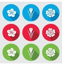 Flower icon set saffron hellebore caltha vector