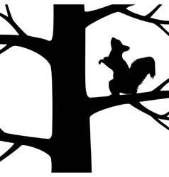 Squirrel on the tree vector