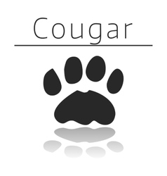 Cougar animal track vector image