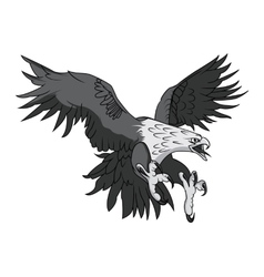 Bald Eagle or Hawk Head Mascot Graphic vector image