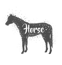 Isolated horse animal design vector