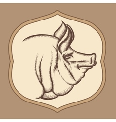 Pig head in engraving style vector