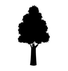 Black tree silhouette trunk stem high plant vector