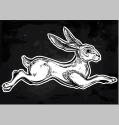 hare running or jackrabbit jumping vector image