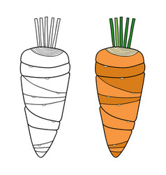 vegetables black and white for vector image vector image