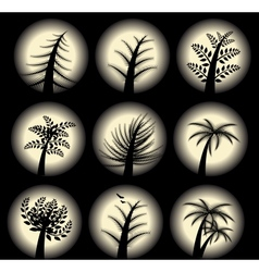 Collection of Stylized trees vector image vector image