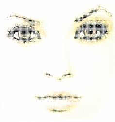 face mosaic vector image vector image