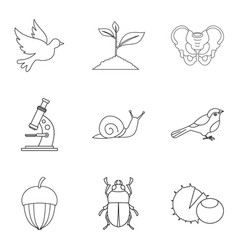 Flier icons set outline style vector