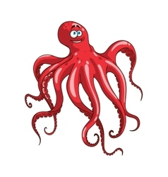 Red octopus animal cartoon character vector