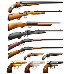 Rifles and pistols vector