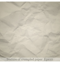 Paper texture vector image vector image