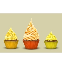 The set of three prize-winning cupcakes vector