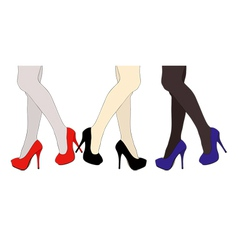 Shoes legs and silk stockings vector
