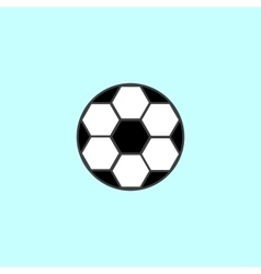 Soccer ball with black and white hexagons sport vector