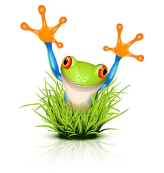 little frog in grass vector image