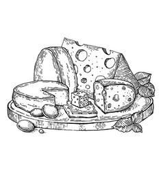 plate cheese engraving style vector image vector image