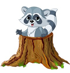 Raccoon in tree stump vector
